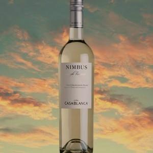 Elogiado pelo crítico Patrício Tapia como um dos melhores Sauvignon Blanc do Vale de Casablanca.