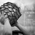 patrón_2