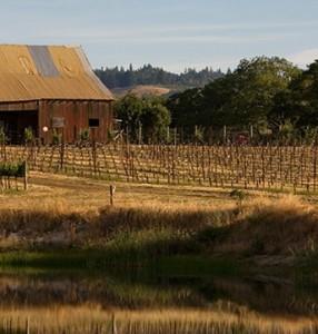 A Edmeades é uma vinícola butique que produz artesanalmente com a uva Zinfandel.