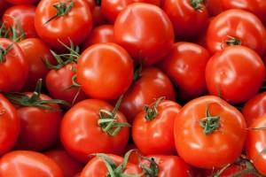 tomates_bx
