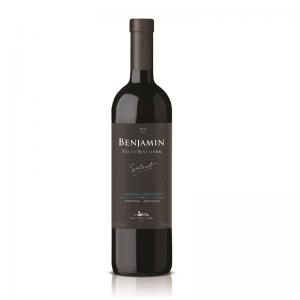 benjamin-select-brasil-cabernet-site