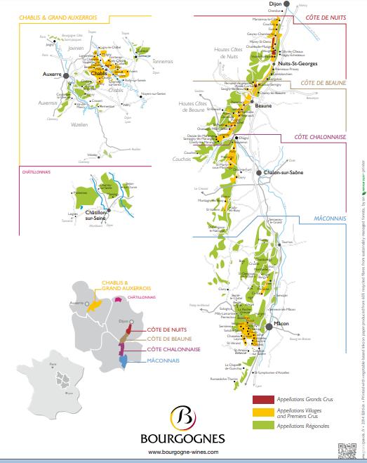 vinhos da borgonha