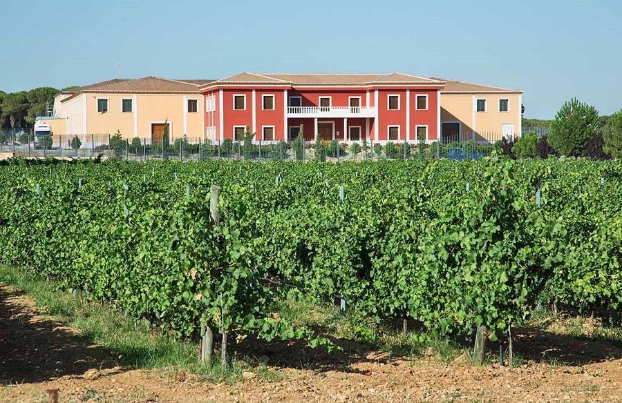 vinhos orgânicos espanhóis