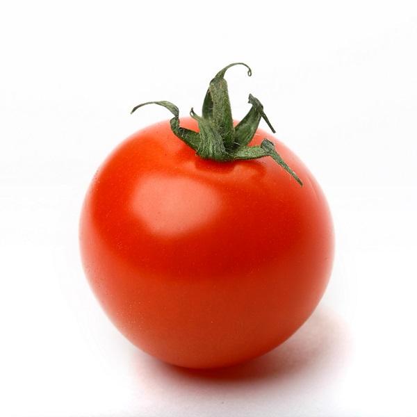 molho ou polpa de tomate