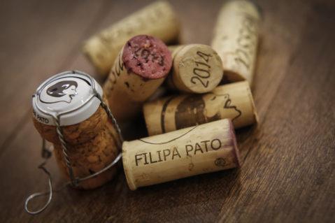 mitos e verdades sobre vinhos